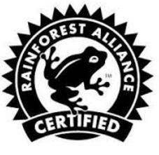 Logo rainforest2